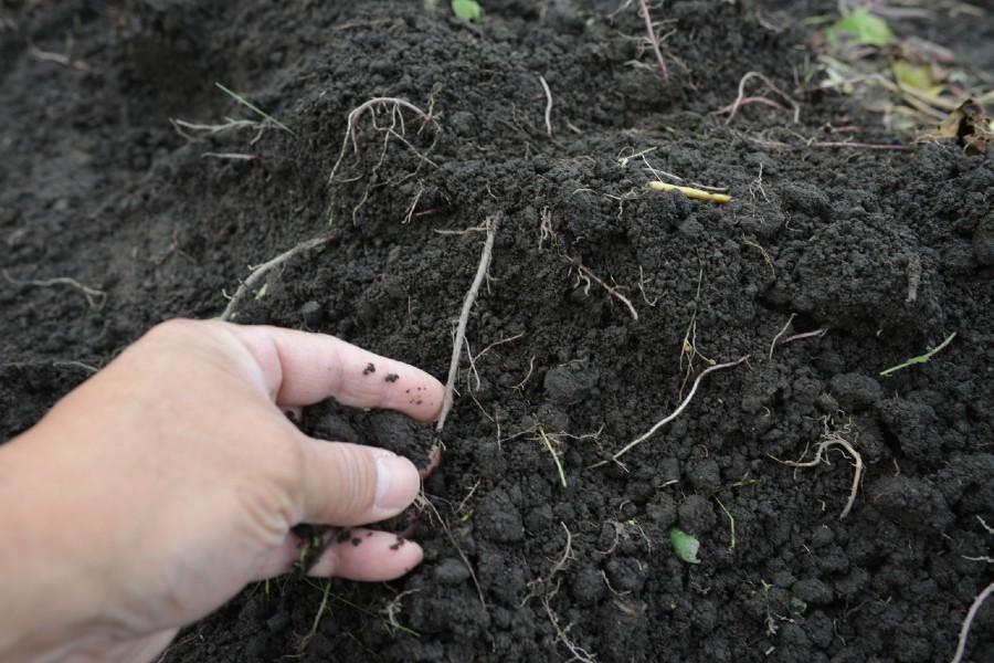 ワークショップ01|ひとにぎりの土は世界とつながっている[動く鉢オーナー限定]